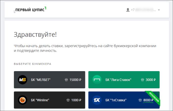 Аккаунт ЦУПИС